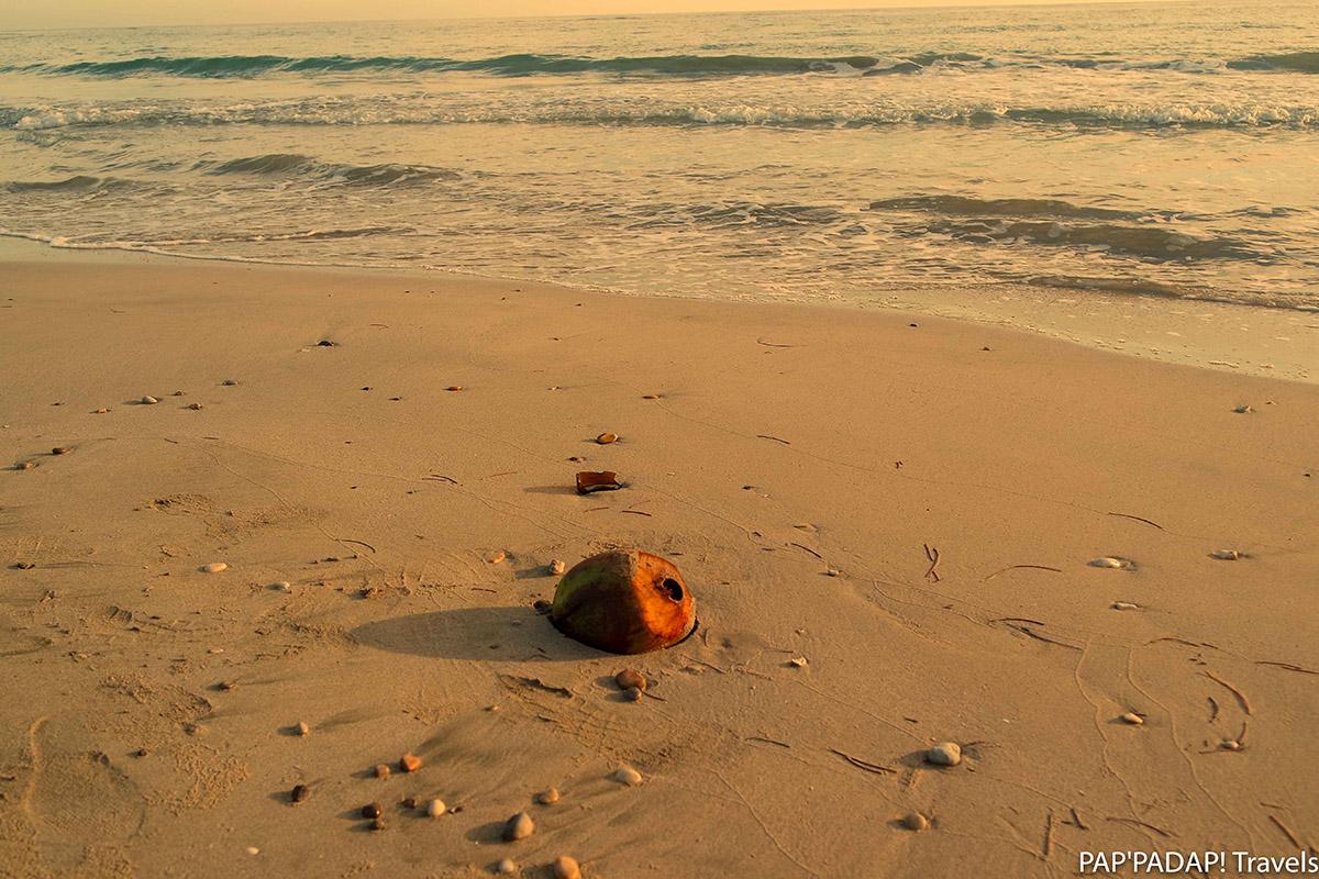 Coconut Sunset Haiti