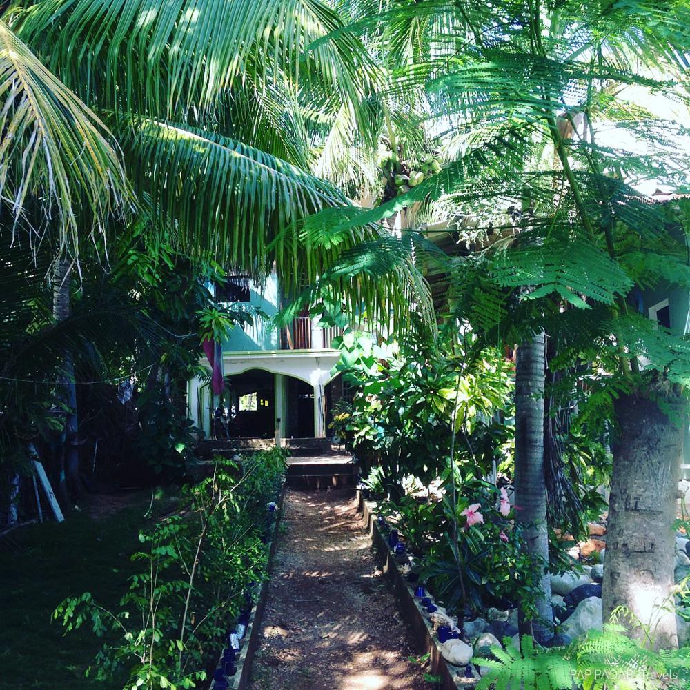 Tree House passerelle dos - Ozone Village - Furcy - Ouest - Haiti